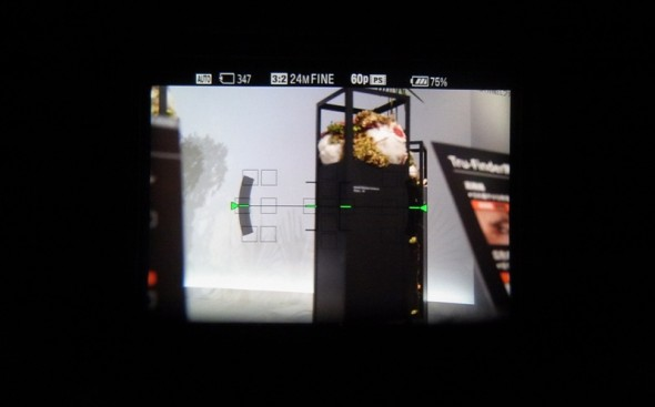 Image through Sony's A77 OLED EVF