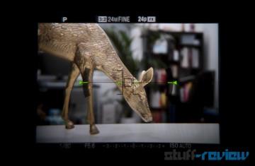 Sony Alpha SLT-A65 hands-on: OLED EVF