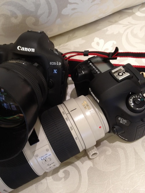 Canon EOS 5D Mark III front top with 1DX