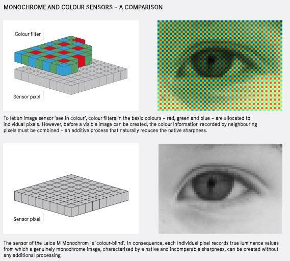 Monochrome vs. color sensor comparison